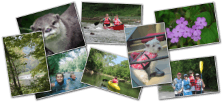 photo collage for Cave Country Canoes